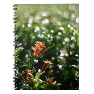 Beautiful Flowers In The World 03 Notebook