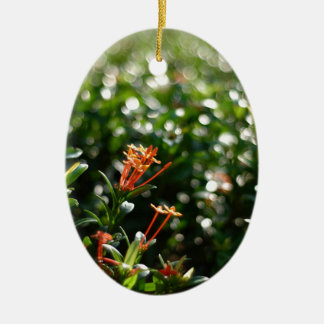 Beautiful Flowers In The World 03 Double-Sided Oval Ceramic Christmas Ornament