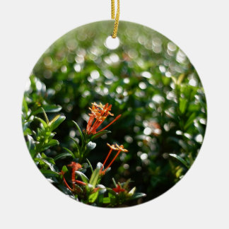 Beautiful Flowers In The World 03 Double-Sided Ceramic Round Christmas Ornament