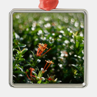 Beautiful Flowers In The World 03 Square Metal Christmas Ornament