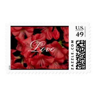Beautiful Flowers Love 7med Stamps
