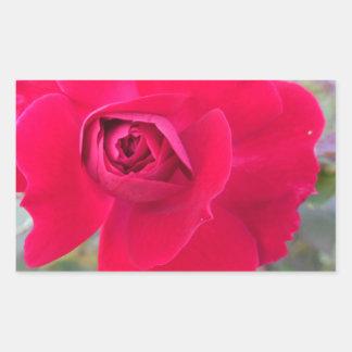 Beautiful Flowers of Bhakti Yoga Land Rectangular Sticker