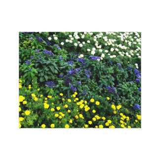 Beautiful Flowers Photo  Single Canvas
