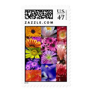 Beautiful Flower's Postage
