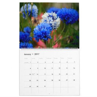 Beautiful Flowers Two Page Two Year Calendar