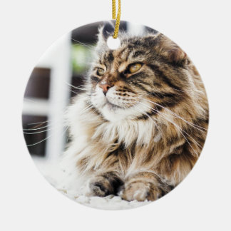 Beautiful fluffy tabby Siberian Persian cat design Ceramic Ornament