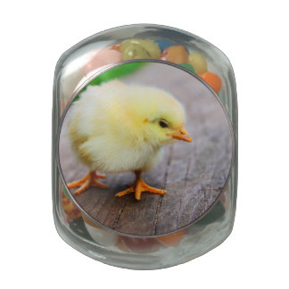 Beautiful fluffy Yellow Chicken Glass Candy Jars