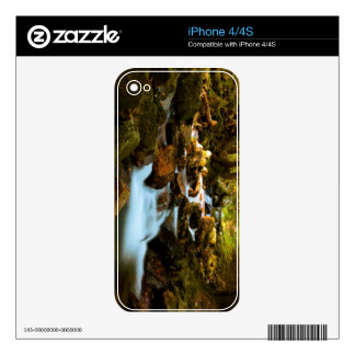 Beautiful forest in autumn iPhone 4S decal