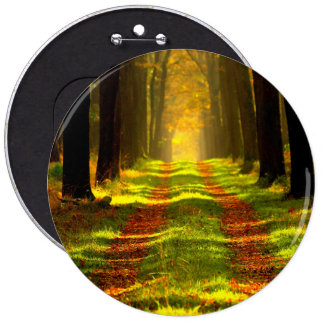 Beautiful Forest Path Road Button