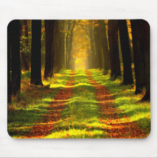 Beautiful Forest Path Road Mouse Pad