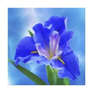 Beautiful fractal iris and its meaning gallery wrap canvas