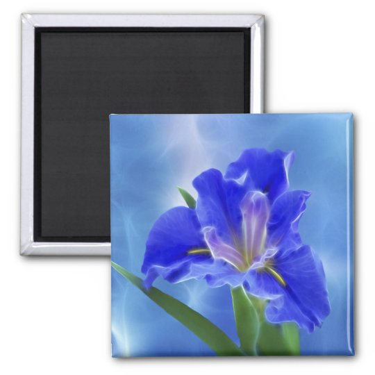 Beautiful fractal iris and its meaning magnet