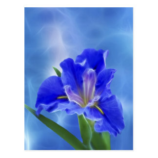 Beautiful fractal iris and its meaning postcard