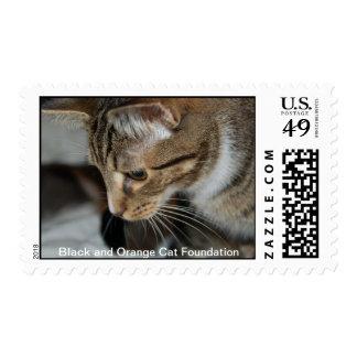 Beautiful Frankie Stamp