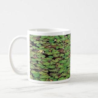 Beautiful Fringed water lily Mugs