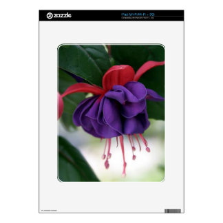 Beautiful Fuchsia Decal For The iPad