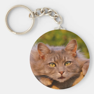 Beautiful furry cat outside portrait keychains