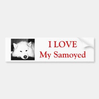 Beautiful furry Samoyed white dog Car Bumper Sticker