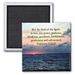 BEAUTIFUL GALATIANS FRUITS OF THE SPIRIT MAGNET