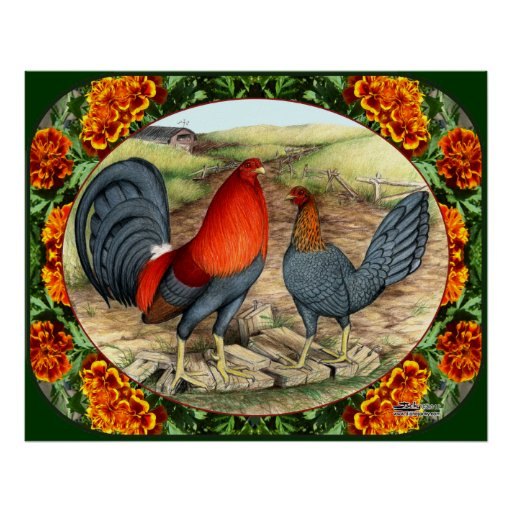 Beautiful Game Fowl Posters