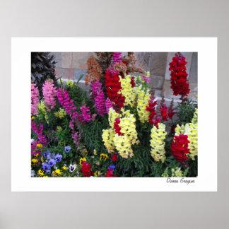 Beautiful Garden Poster Print