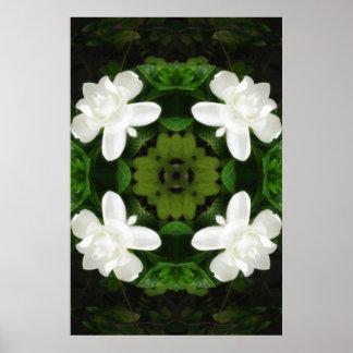 Beautiful Gardenia 5 Kaleidoscope 1 Poster