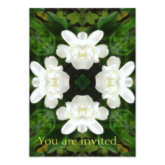 Beautiful Gardenia 5 Kaleidoscope 2 Card