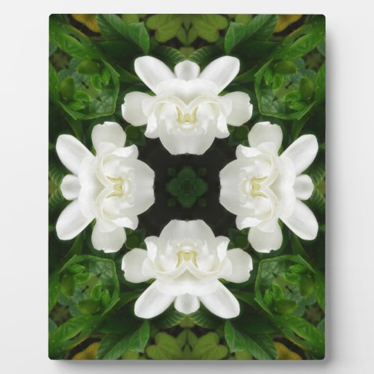 Beautiful Gardenia 5 Kaleidoscope 2 Plaque