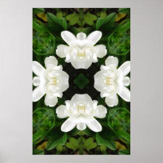 Beautiful Gardenia 5 Kaleidoscope 2 Poster