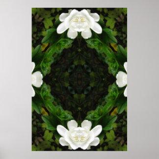 Beautiful Gardenia 5 Kaleidoscope 3 Poster