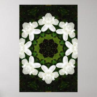 Beautiful Gardenia 5 Kaleidoscope 4 Poster