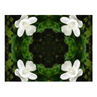 Beautiful Gardenia 5 Kaleidoscope 6 Postcard