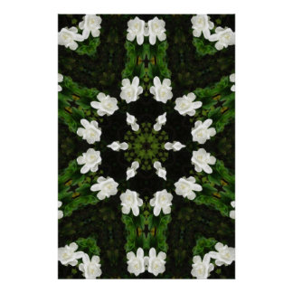 Beautiful Gardenia 5 Kaleidoscope 7 Poster