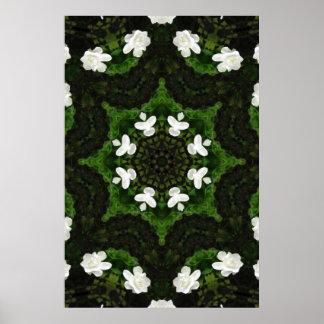Beautiful Gardenia 5 Kaleidoscope 8 Poster