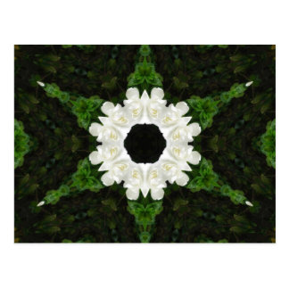 Beautiful Gardenia 5 Kaleidoscope 9 Postcard