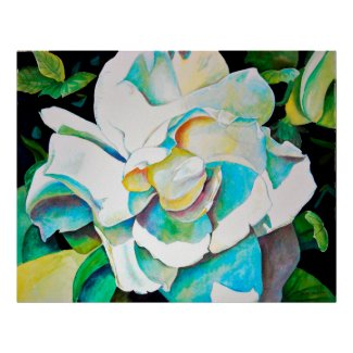 Beautiful Gardenia Close-up Poster