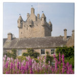Beautiful gardens and famous castle in Scotland 2 Tile