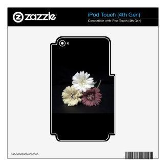 Beautiful Gerberas iPod Touch 4G Decal