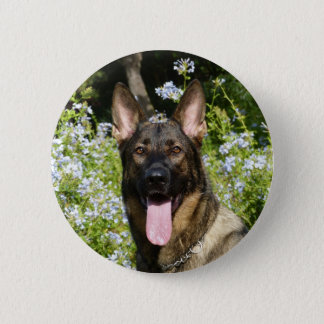 Beautiful German Shepherd dog Button