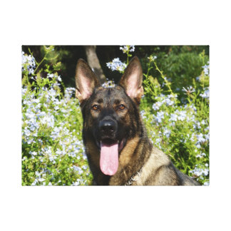 Beautiful German Shepherd dog Gallery Wrapped Canvas