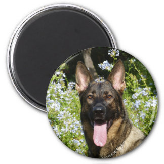 Beautiful German Shepherd dog Magnet