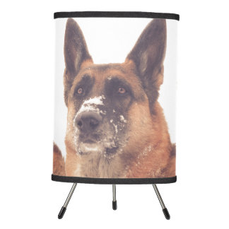 Beautiful German Shepherd Lamp