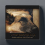 """Beautiful German Shepherd Pet Memorial Plaque<br><div class=""""desc"""">A memorial to our pets who are gone from this earth but alive in our hearts. A gorgeous German Shepherd Dog lays sleeping. Up against a dramatic, black background, it makes a stunning tribute. A wonderful remembrance gift for that special person who lost that special pet. Keep the plaque as...</div>"""