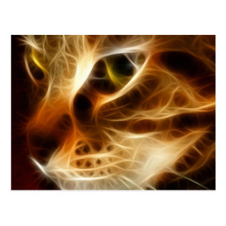 Beautiful Ghostly Fire Cat Postcard