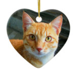 Beautiful Ginger Cat Christmas Ornaments