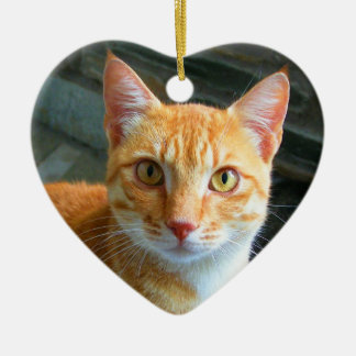 Beautiful Ginger Cat Double-Sided Heart Ceramic Christmas Ornament