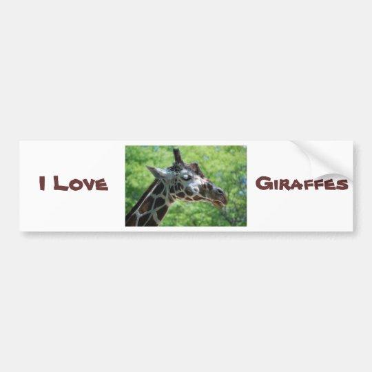 Beautiful Giraffe Bumper Sticker