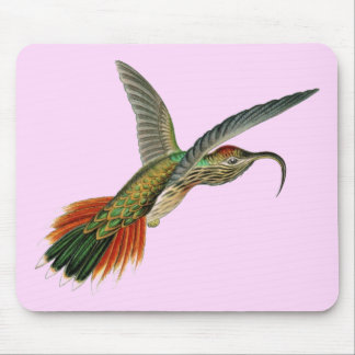 Beautiful girly bird of paradise picture mouse pad