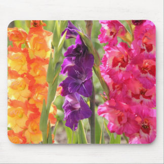 Beautiful Gladiolus Blooms Mouse Pad