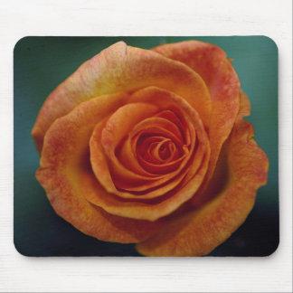 Beautiful Gold Medal Grandiflora Rose 'Aroyqueli' Mousepad
